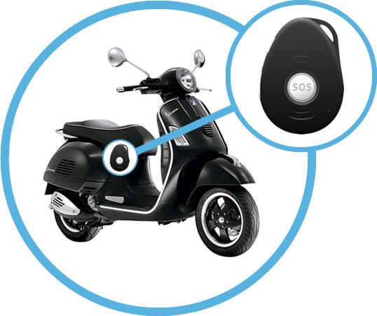 GPS Tracker Roller