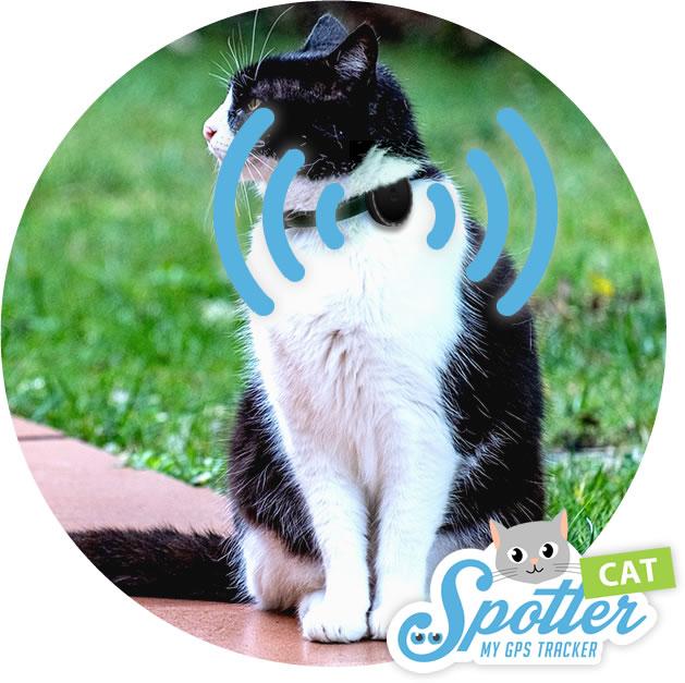 gps tracker katze - Pet Spotter Katze