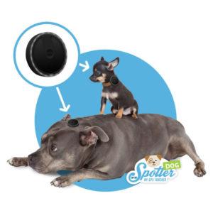 gps tracker hond - groot en klein Spotter