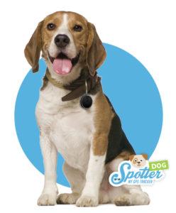 gps tracker hond - halsband Spotter