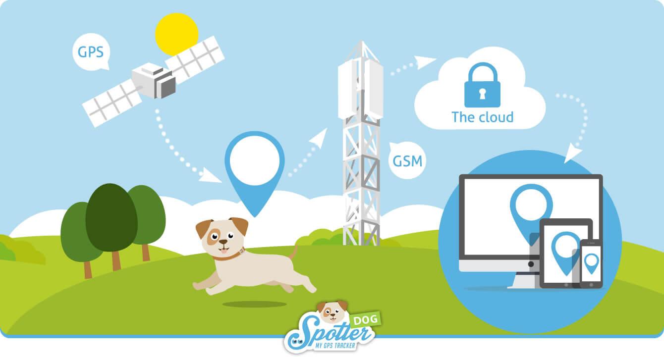 Spotter-Zo-werkt-het-Dog