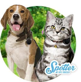 GPS tracker huisdieren - Spotter